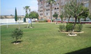 Apartment in Torrevieja.  Ref:ks1006