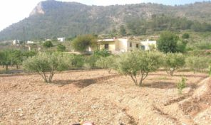 Lovely Country House with 4500m2 plot in Aspe.  Ref:ks1455