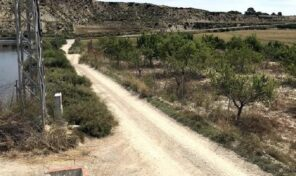 Large Plot with electricity  in Torremendo. Ref:mks2689
