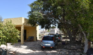 Great Country Villa with Olive trees in Crevillente.  Ref:mks2670
